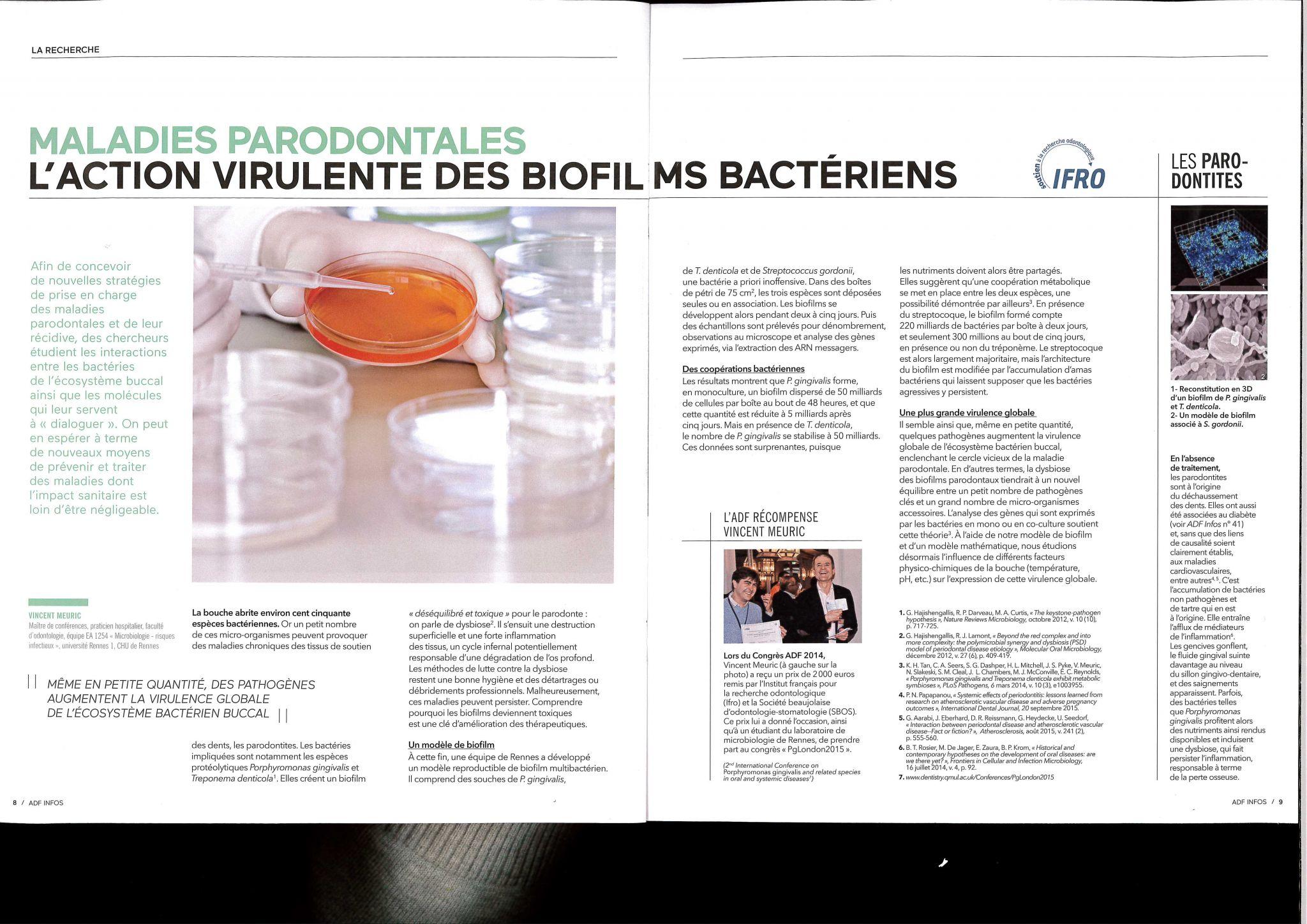 Parodonte biofilm ADF INFOS