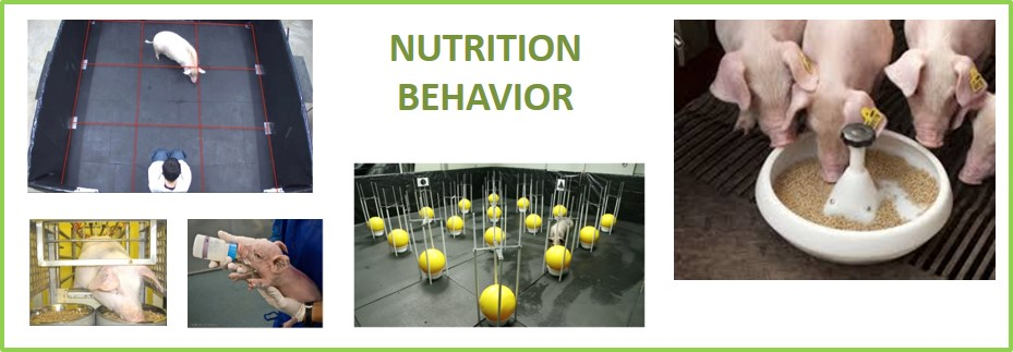 Nutrition behavior